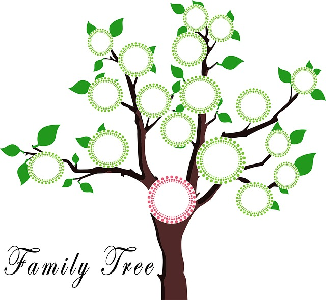 rodinný strom.jpg